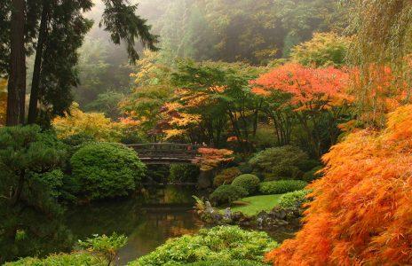 Japanischer-Garten_shutterstock_2374236