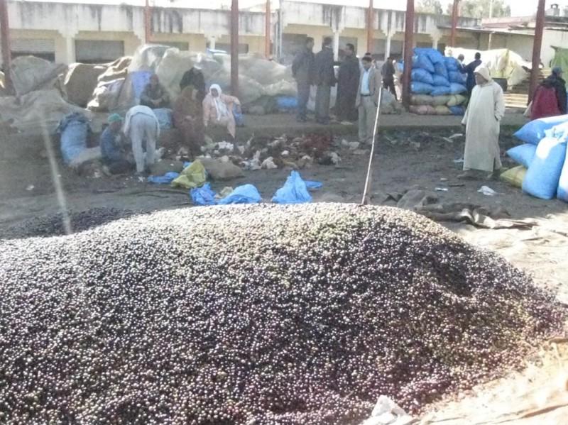 Markttag - feine Oliven satt