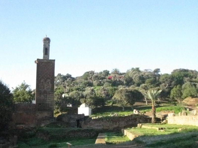 Chellah - römische Siedlung, merinidische Totenstadt, botanischer Garten