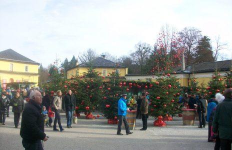 Adventsmarkt Hellbrunn